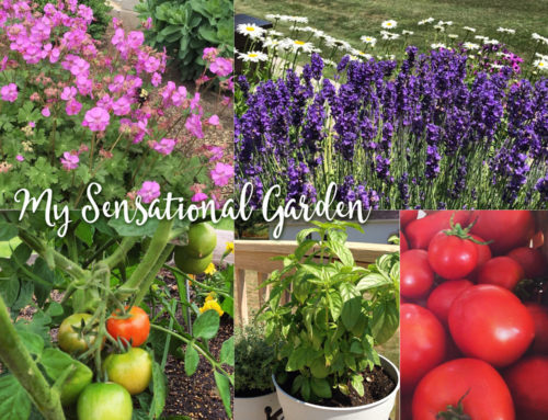 4 secrets that will make your garden sensational