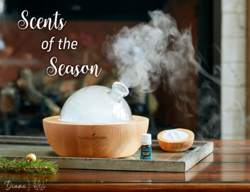 Scents of the Season: Splendid Aromas to Diffuse During the Holidays