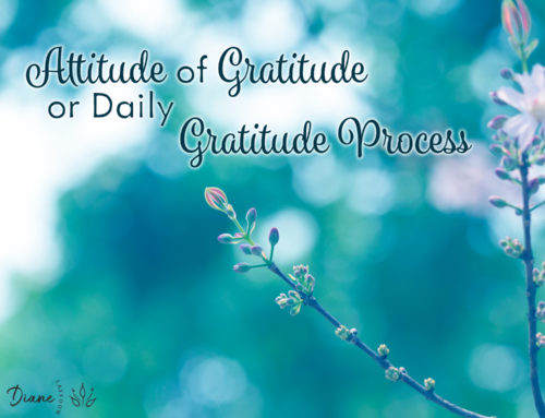 An Attitude of Gratitude? or Dedicated To A Daily Gratitude Process