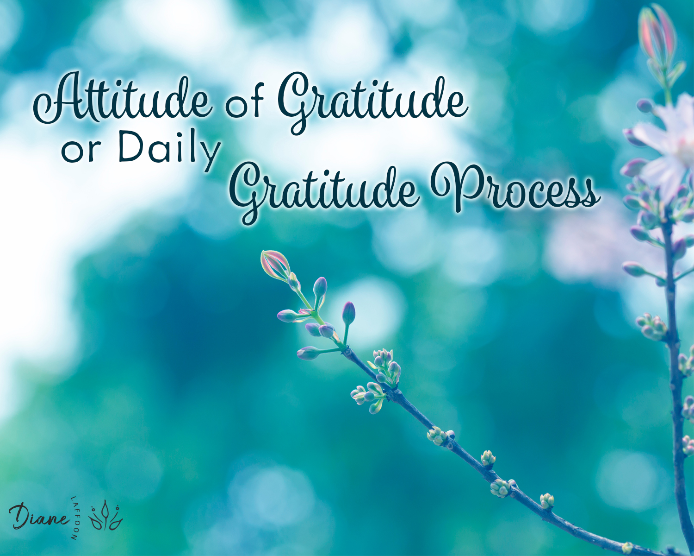 Gratitude Process