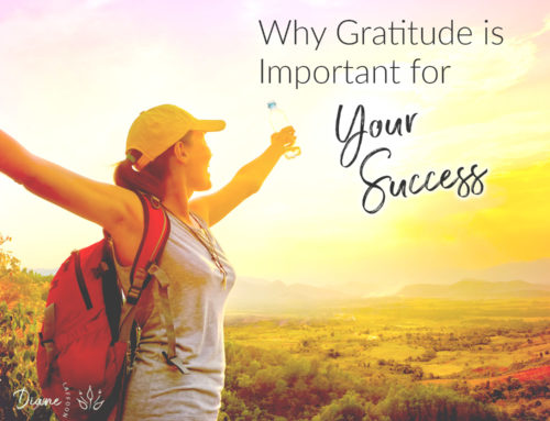 Why Gratitude is Important for Your Success