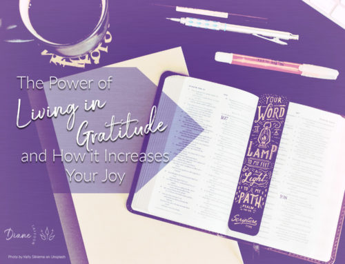 The Power of Living in Gratitude and How it Increases Your Joy